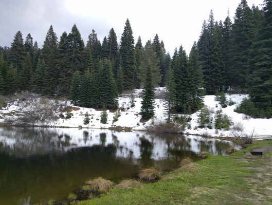 Another Winter View of Poppy Lake