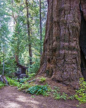 Beer Creek Trail