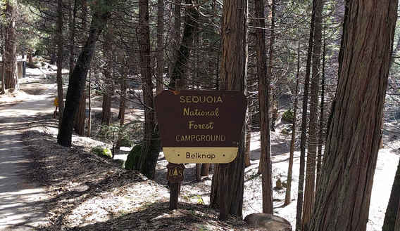 Belknap Campground Sign
