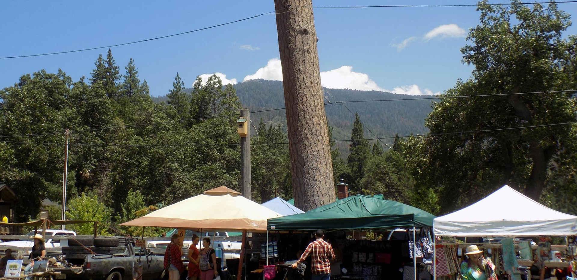 Camp Nelson Mountain Festival Vendors