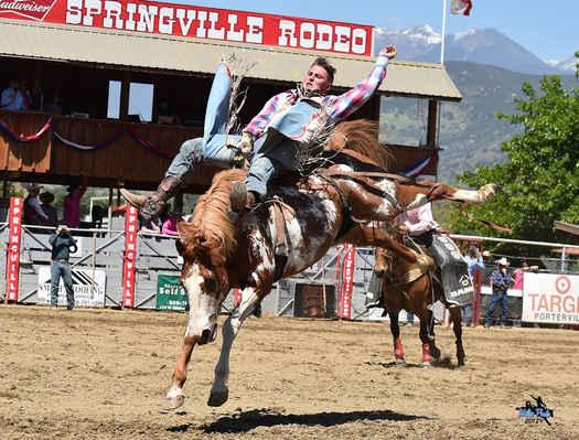 Springville Sierra Rodeo