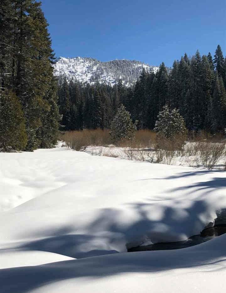 Hossack Meadow in Snow - Sequoia Crest