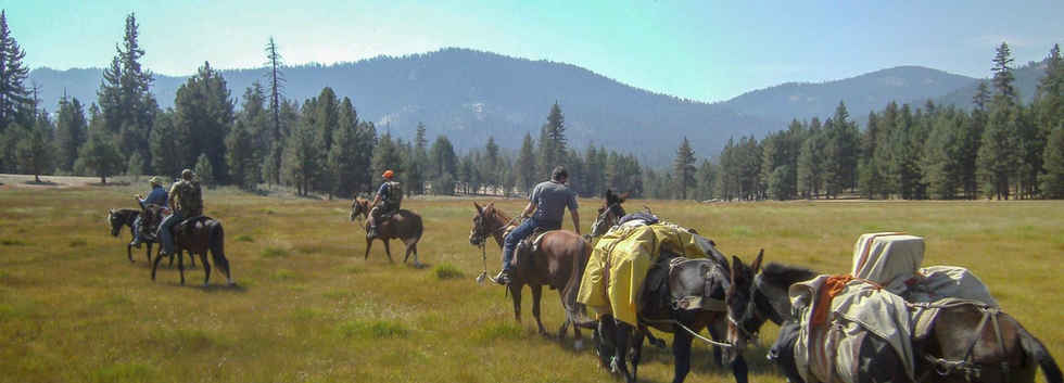 Pack Trip into the Golden Trout Wilderness