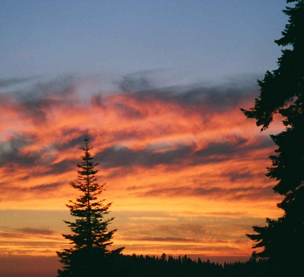 Sequoia Crest Sunset