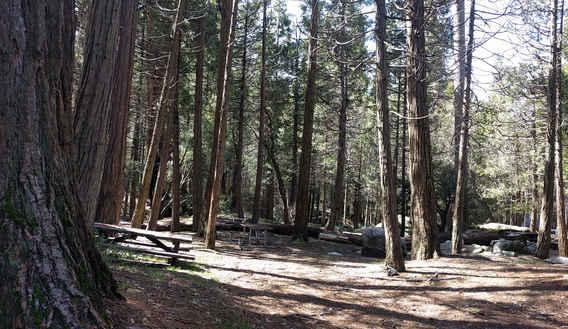 Belknap Campground Site