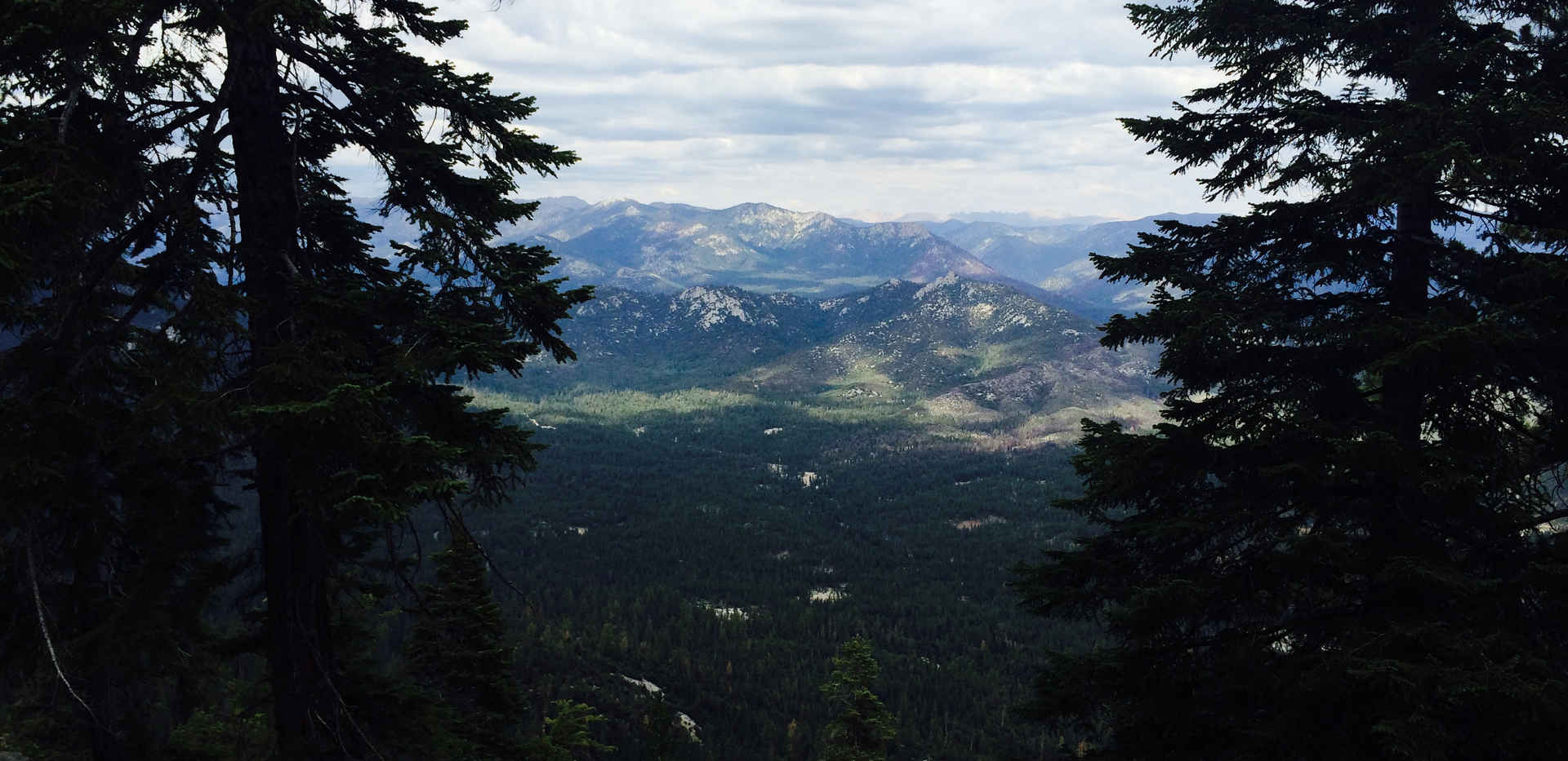 View from the Needles Lookout Trail