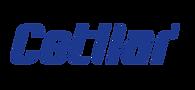Cetilar_logo.png