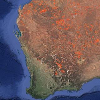 Australian_Fires_Img.JPG