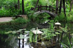 Home_image_bridge