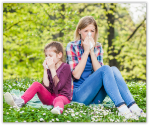 Réactions-allergiques-pollen-histamine-