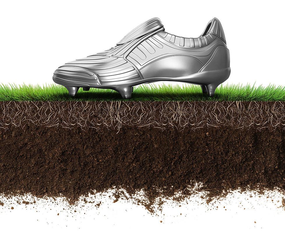 Erde Humus Sport Rasensubstrat