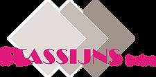 Logo Stassijns HD.png
