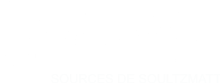Logo_Lisbeth_blanc_SDS - Copie.png