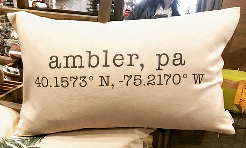 Ambler Coordinates Pillow