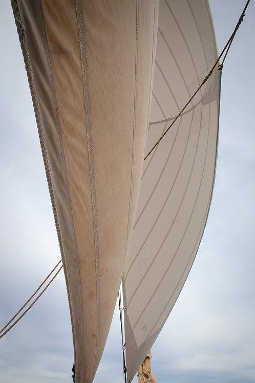 Staysail Working Together by Deborah Dawson