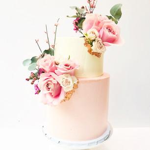 Two Tier Pastel Pink Cake
