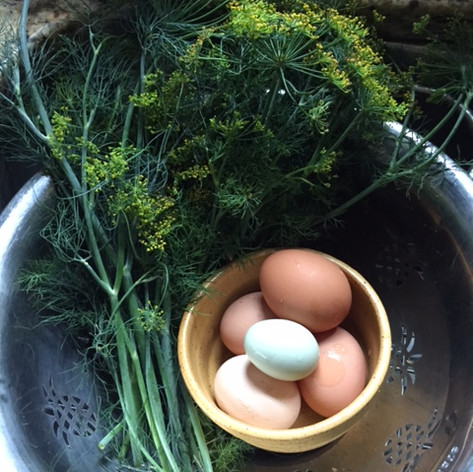 Egg & Dill Salad
