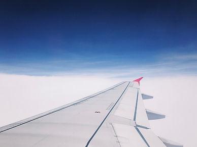 飛行機の翼