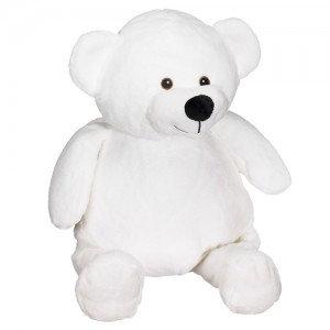 Teddy wit
