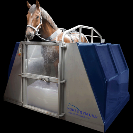 Taking Equine Care to a New Level – Give Your Horse the Spa Treatment with HORSE GYM USA®