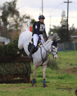 For Immediate Release :GGT Footing™ Continues to Support Equestrians and Horse Shows during the pa