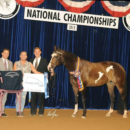 IALHA National Grand Champion Adelina RLA Wins HORSE GYM USA® Top Equine Athlete Award