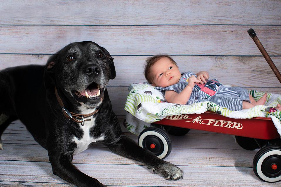 Newborn baby boy and his dog