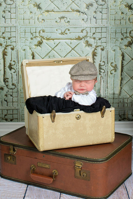 baby in a suitcase photo