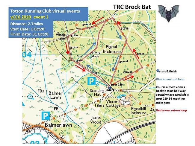 BrockBatCC6.jpg