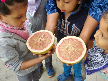Planning the right nutrition for growing children.