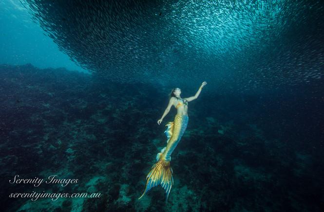 Mermaid Bonnie SI