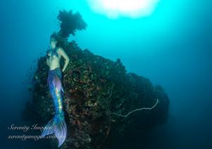 Shinkoku Mermaid-9998-.jpg