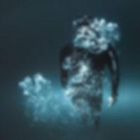 Freediver Wave 1.jpg