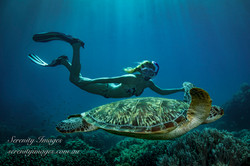 Bonnie with Turtle SI-3920