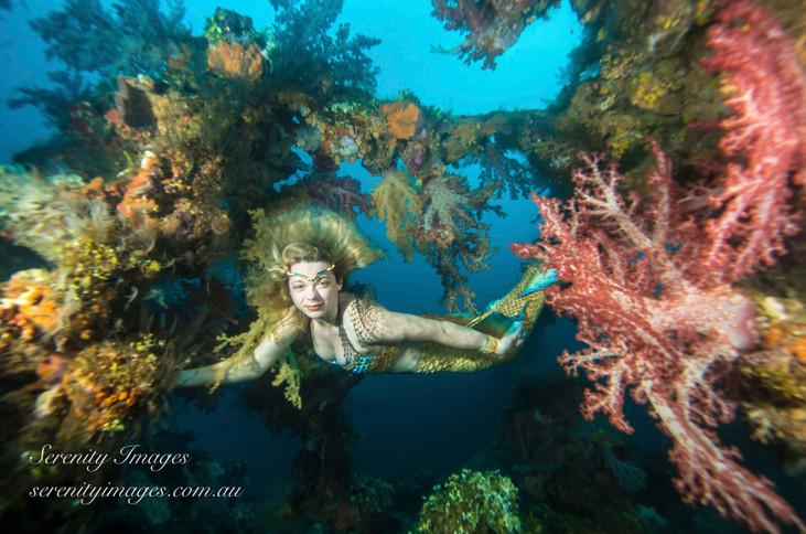 SI Mermaid Bonnie Fujikawa