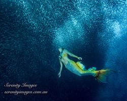 Mermaid Bonnie SI-6286
