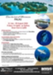 23957_Shellharbour_Palau_2020.jpg