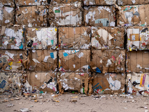Achieve warehouse sustainability in 2021
