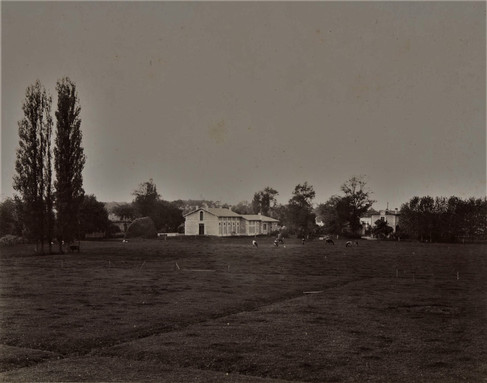 1783-1896 Château Raba La ferme troupeau de 15 vaches