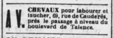 AV Chevaux