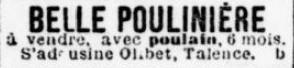 Vend Poulain