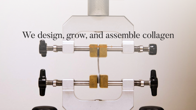 With Lab-Grown Leather, Modern Meadow Is Engineering a Fashion Revolution(BoF)