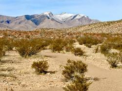 Mt. Potosi, Nevada Production