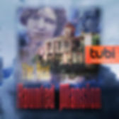 The Real Haunted Mansion, Tubi,tv,documenary, haunted mansion
