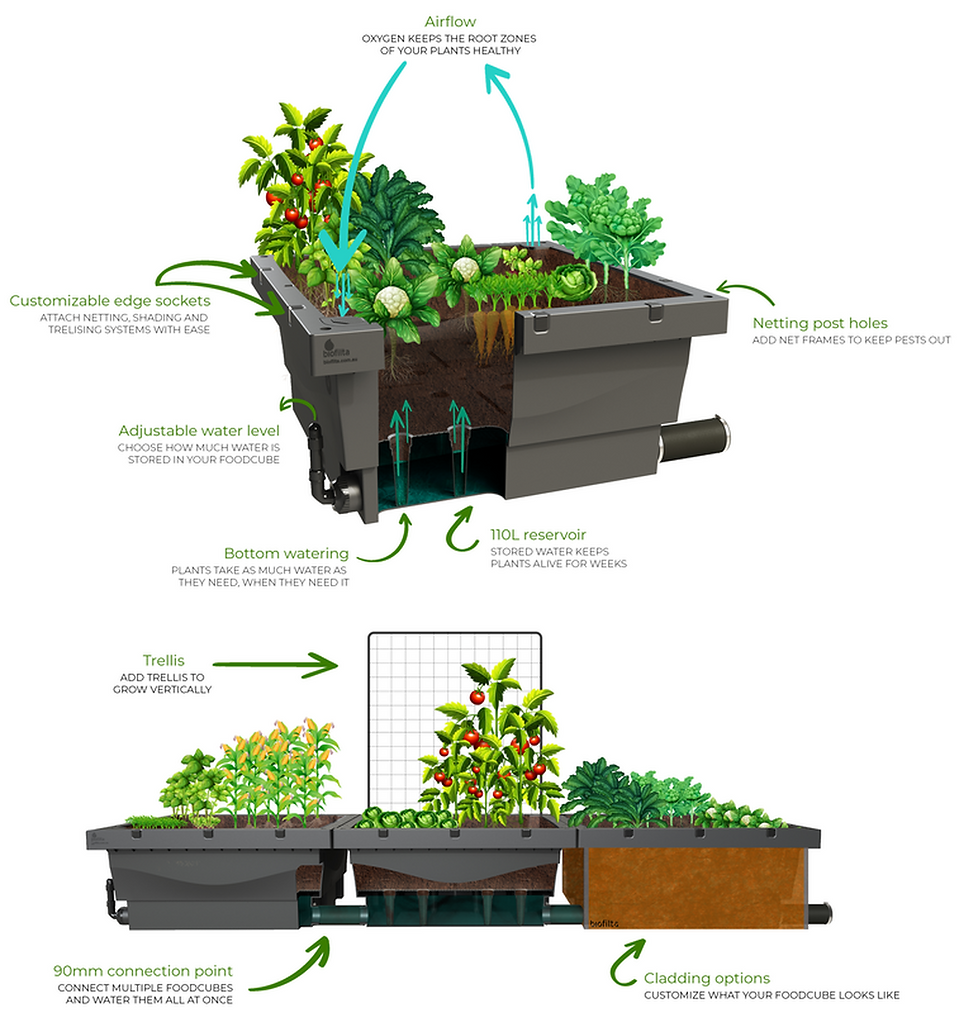 wicking-beds (1).png