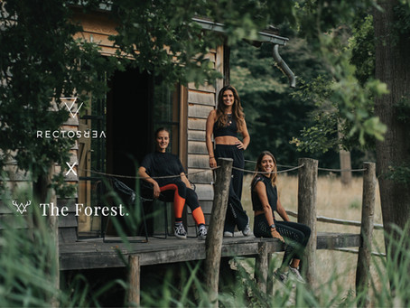 The Forest x RectoVerso