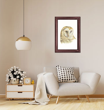 owl in a room .jpg