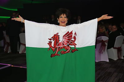 Shirley Bassey Tribute Welsh Flag Gown