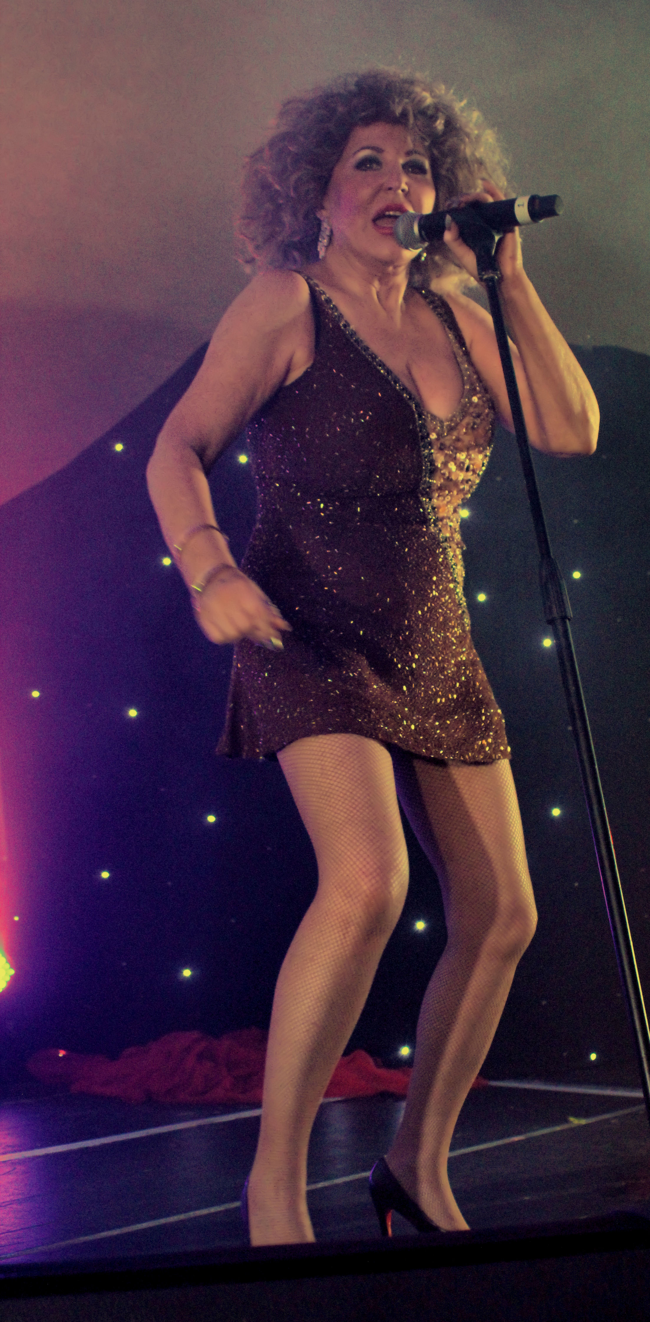 Tina Turner Tribute 'Live'