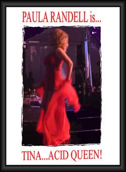 Tina Turner Tribute Impersonator